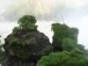 arg_iguazu-falls_151