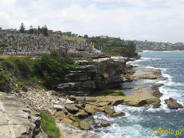 Sydney, Australia - Cmentarz nad brzegiem Pacyfiku