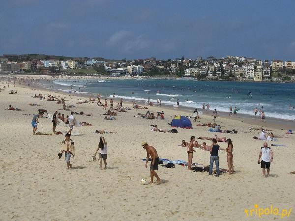 Plaża Bondi, niedaleko Sydney w Australii