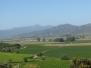 Chile, Casablanca Valley słynie z produkcji wina