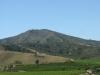 Dolina Casablanca w Chile słynie z produkcji wina