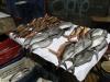 Chile, Valparaiso - targ rybny