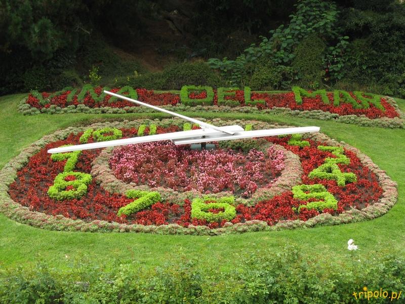 Vina del Mar - zegar kwiatowy