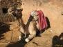 Wycieczka na Górę Synaj w Egipcie
