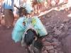 Osły służą do transportu wszelakich materiałów na Górę Synaj