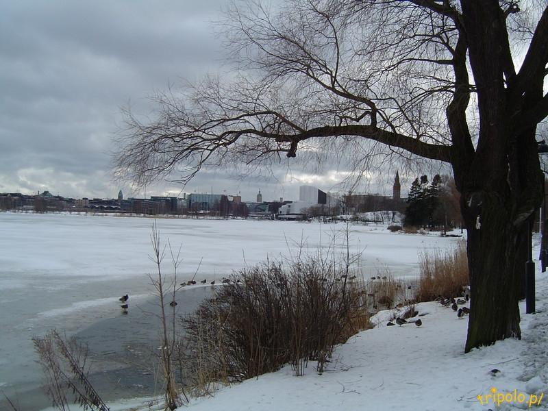 Helsinki - park w centrum miasta