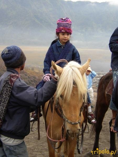 Koń dobrym środkiem transportu jest
