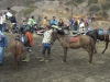 Transport na Bromo