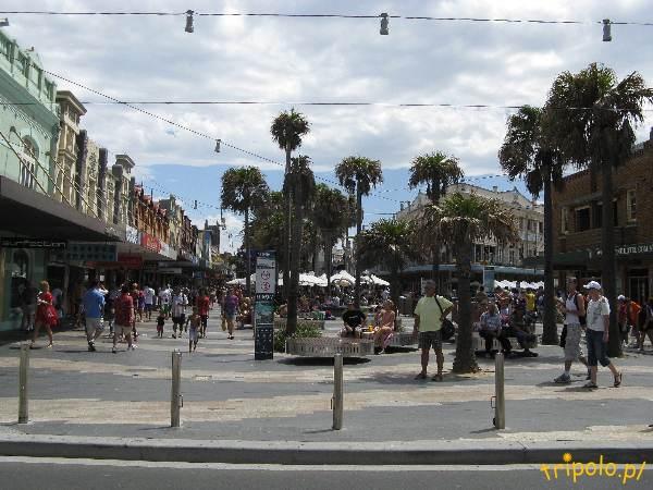Główna aleja w Manly