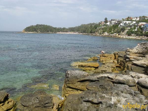 Główna plaża w Manly, Australia