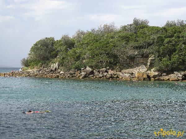 Manly - kolor wody jest przepiękny