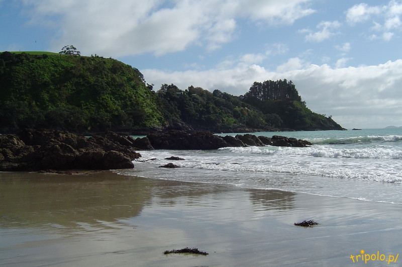 Wyspa Waiheke - krajobrazy