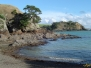 Auckland, NZ - Wyspa Waiheke - piesza wycieczka