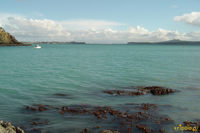 Wyspa Waiheke - piesza wycieczka