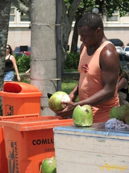 Komu zimne mleko kokosowe?