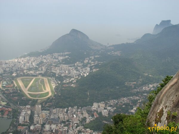 Widok ze szczytu Corcovado