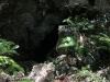 Santo Domingo - Park Narodowy Los Tres Ojos- Park Narodowy Los Tres Ojos