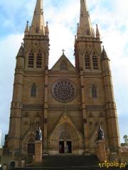 Katedra w Sydney