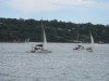 Sydney - jachty w zatoce