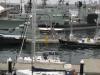 Sydney - port jachtowy