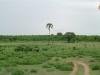 tnz_safari_041