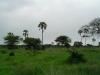 tnz_safari_050