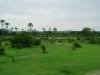 tnz_safari_051