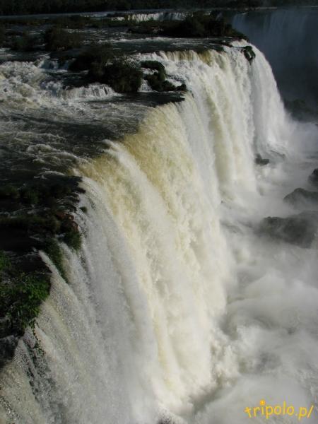 bra_iguazu-falls_081