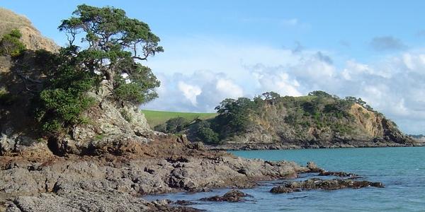 Nowa Zelandia, Auckland – GALERIA zdjęć z wyspy Waiheke