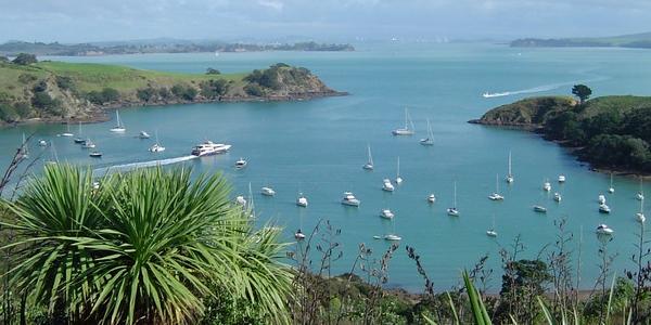 Nowa Zelandia, Auckland – WYCIECZKA za miasto na wyspę Waiheke